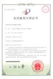 patent 19