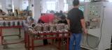 Testing of Stator wiring