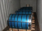 Steel Coil Packaging