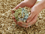 What is the advantages of animal feed pellets compared with traditional type