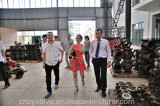 Foreign client visit our factory