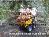 Power Barrow Mini Dumper used in Palm Plantation