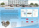 About Jingli Paper Bag