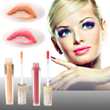 Lip Gloss Cosmetics Product