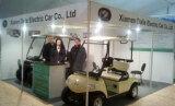 2012 HDK at Prague golf show