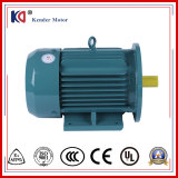 Three Phase Electric AC Induction Motor with 1HP 0.75kw Power
