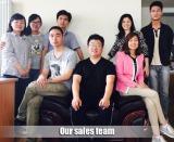 Sales team1
