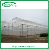 Trinog agrilculture greenhouse