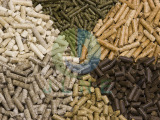 Analysis of the wood pellets market potential in the future