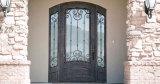 single iron entry door with sidelites