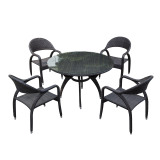 Outdoor Rattan/Wicker Dining Table and Chair Sets for Outdoor Furniture(LN-1031)