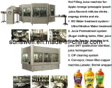Automatic Complete Juice Plant / Juice Whole Production Line / Turnkey Projedct for Juice Plant