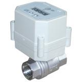 Automatic timer drain valve