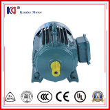 Electric AC asynchronous Servo Motor with Low Rpm