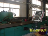 Screw milling machine