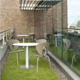 Landscaping grass lawnfor the decoration of coffe house and bar