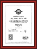 Dongguan Pepson ISO Certificate(chinese)