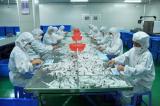 Disposable syringe workshop 2