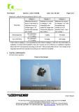 CI Flake 1 PAHs (page 3)