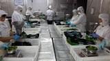 frozen vegetables workshop