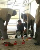 Guide training for mozambique client favos farm