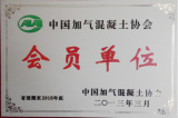 Member of Chinese Aerated Concrete Association