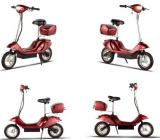 electric scooter 250w