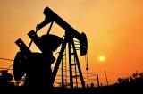 Oil &Gas