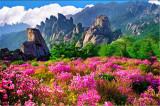 Qingdao sight