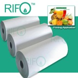 Ttearproof synthetic paper for offset pritning poster