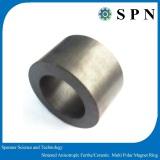Ferrite sintered magnet multipole ring for motor