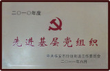excellent party organization