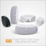 LBG-41S wall speaker 4ohms