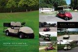 Multi-Function golf cart