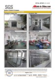 SGS Report-7