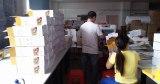 Our Packaging Workshop