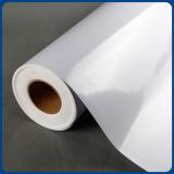 Eco-solvent Self Adhesive Vinyl
