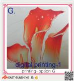 microfiber cloth with digital printing