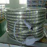 AC220V LED Strip on sale in Sep