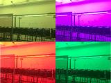 INDOOR/OUTDOOR RGBW/RGB 54x3W LED PAR CAN LIGHT