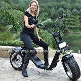 Fat tire electric scooter with remove battery