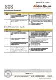SGS Audit 06