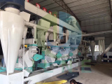 Palm fiber pellet line plant installed in Malaysia