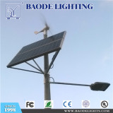 6M30W solar wind street lighting in Poland