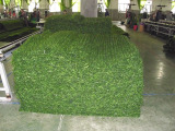 Produced---Production Process of Artificial Hedge