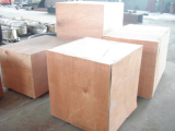 Export Package
