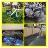 26′ F/R V Brake 36v/350w City Electric Bike For 20′ Container