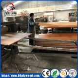 Oak/ Bintagor/ Okoume veneer lamintation process for plywood