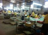 Sino Cheer factory