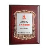 Ten outstanding network operators of hardware industry in China(2011)